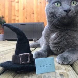 Photo de l'acheteur Carrie Grover, qui a évalué cet article avec l'Etsy app for iPhone.