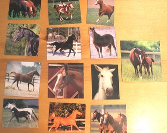 handcut collection of horse images,horse image ephemera kit,horse images,Craft pack for scrapbooks, smash book, collage,A-55,horse pictures
