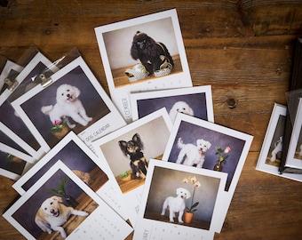 The 2018 Tiny Dog Calendar