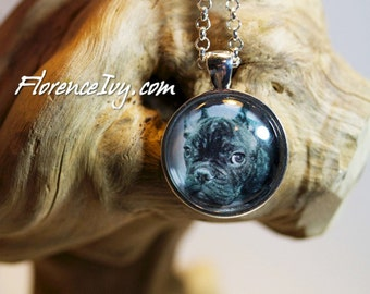 Brindle French Bulldog Sad Face Black And White Art Photo Pendant With Chain Handmade Jewelry Necklace Silver Charm Cabochon Puppy Dog Love