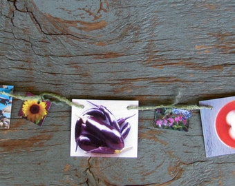 Food & Flowers Mini Garland