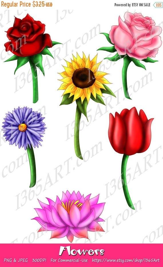 50% OFF Beautifull Flower Clipart, flower clip art, Scrapbook, Party ...