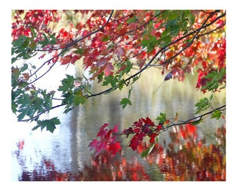 Watercolors, Art, Photography, Fall Scene, Fine Art Photography, Rustic, Countryside, Reflection, 8x10 and larger Print