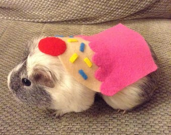 Guinea pig costume. Cupcake small pet costume. Handmade cute unique & Valentines gift guinea pig cupid costume