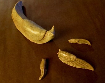 Old Ceramic Banana Slug Family From Artist Dave Archers Museum