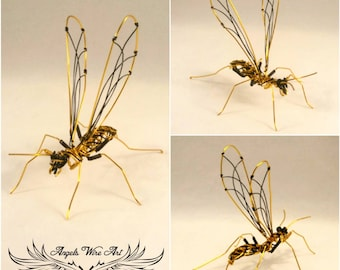 Wasp , wire wasp , yellow jacket wasp ,wire imsect