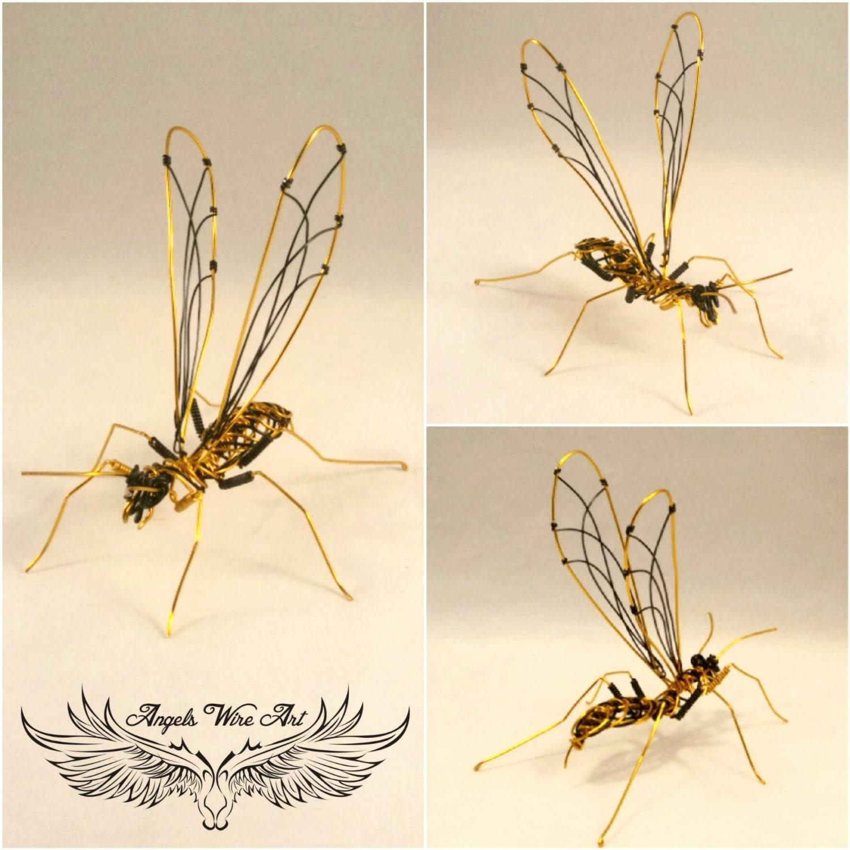 Wespe Draht Wespe gelbe Jacke Wespe Draht imsect