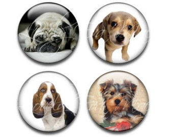 Dog Magnets, Puppy Magnets, Set of 4, Round Glass Magnets, Circle Refrigerator Magnets, Fridge Magnets