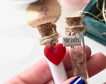 Valentine Secret Message Card - Heart & Make a wish Bottles - Secret message card Set of 2 Secret bottles - Wedding Friendship Love gift