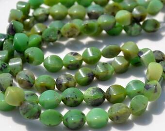 Chrysoprase Bicone 10x6mm Beads   10