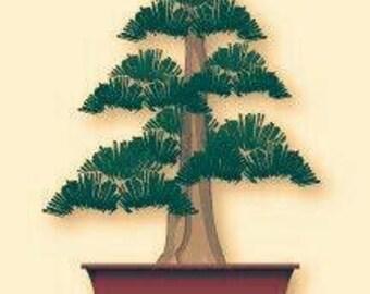Personalized Bonsai Tree (small)