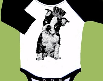 Baby Clothes, Boston Terrier, One Piece, Baby Bodysuit, Baby Girls, Baby Boys , black Long Sleeve  Raglan by ChiTownBoutique.etsy