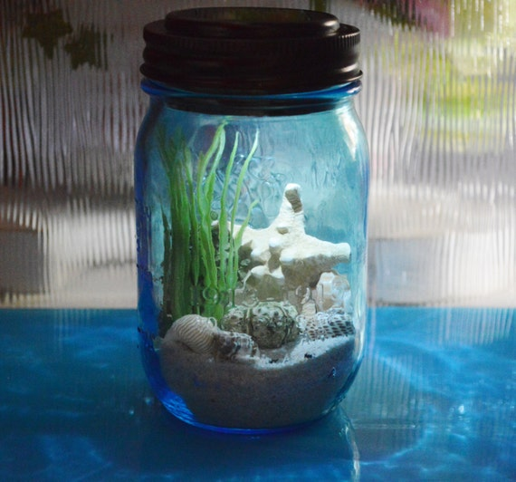 Nightlight Beach Terrarium Kit Beach In A Bottle Blue