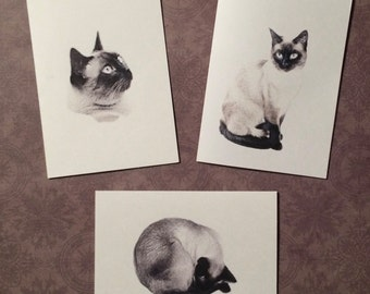 Set of 6 or 12 Handmade Blank Siamese Cat Print Note Cards