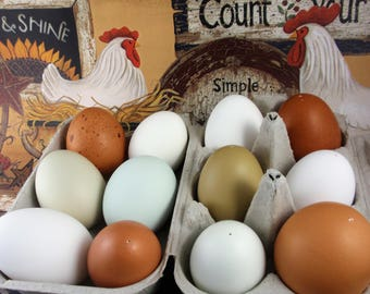 One Dozen Blown Eggs, Eco Friendly Easter Decor, Chicken and Duck Eggs in White, Brown, Green and Blue