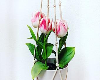 "Macrame Plant Hanger / Natural Cotton  / 42"" Long / Wooden Loop"