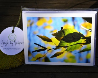 Autumn Leaves Note Cards Set of 5 Fall Photography Cards Fall Hostess Gift Fall Thank You Cards Colorful Leaves Nature Lover Gift Gardener