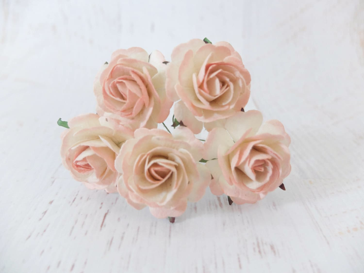 5 35mm Cream Blush Pink Tip Paper Roses Paper Flowers