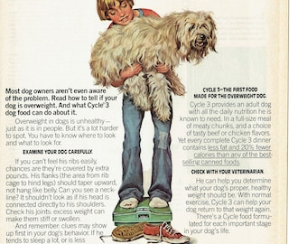 1976 Advertisement Cycle Nutrition Canned Dog Food Wet First For Sheepdog Boy And His Overweight Vet Rescue Office Clinic Wall Art Decor