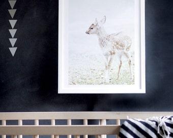 Baby Deer Photography, Kids Wall Art, Animal Print, Animal Photography, Woodland Decor, Deer, Baby Decor, Nursery Decor. Baby Deer Art Print
