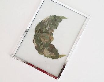 Moon shaped Herbarium pressed - leaf frame