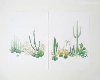 Cactus Watercolor Print Set - Any FOUR Cactus Art, Cactus Print / 8x10 OR 8x11 Botanical Prints, Modern Home Decor