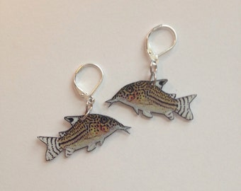 Handcrafted Plastic Cory Corydoras Catfish Tropical Fish Earrings Gifts for Her cory18a