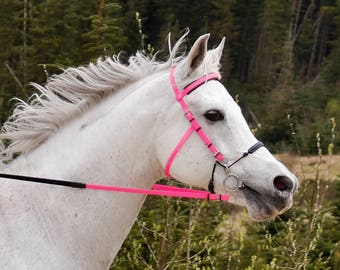 Perfeq C Bit Bridle for Combination bits such as Mylar and Hackmore