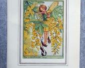 Laburnum Flower Fairy Vin...