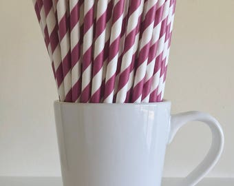 Cranberry Striped Paper Straws Party Supplies Party Decor Bar Cart Cake Pop Sticks Mason Jar Straws Wine Magenta Cranberry