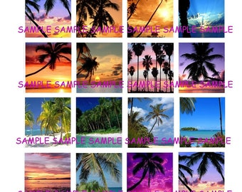 INSTANT DOWNLOAD...Beach Sunsets and Palm Trees... Images Collage Sheet for Scrabble Tile Pendants ...Buy 3 get 1