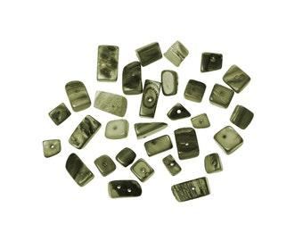 40 Coquillages naturel, gris vert, perles formats variés