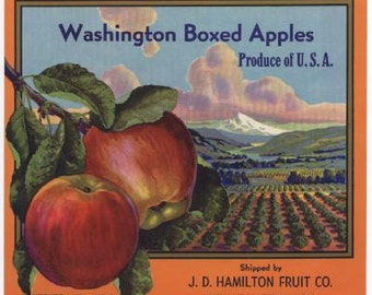 1940s Washington State Red Apples Orchard Hamilton Fruit Vintage Crate Label