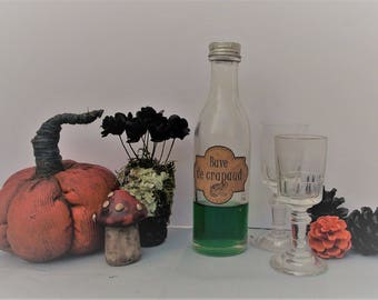 Miniature Halloween, witch, potion, decorations for Halloween