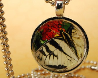 Faceted Glass Tile Photo Pendant Necklace Butterfly XO127