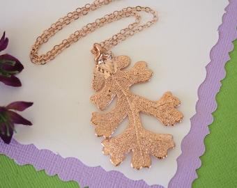 Rose Gold Oak Leaf Necklace, Real Leaf Necklace, Oak Leaf, Lacey Oak Leaf, LC51