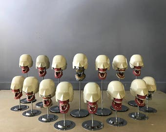 Dental Manikin, Dental Manequin, Orthodontic Metal Head, Phantom, Surgical