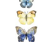 Butterflies Painting - Pr...