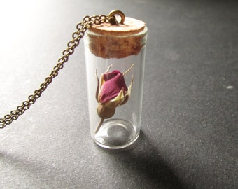 Rose Necklace / Rose Jewelry/ Beauty and the Beast / Valentines Day Gift / Anniversary Gift / Bottle Necklace / Jar Necklace