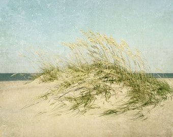 Coastal Decor, Beach Photography, Landscape, Summer, Sand Dunes, Sea Oats, Outer Banks, Beach Decor, Fine Art Print, blue, green, beige