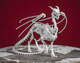 Dragon Skeleton 3D Print Taxidermy Sculpture