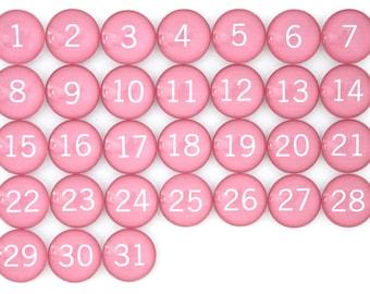 31 Pink Calendar Number Glass Magnets
