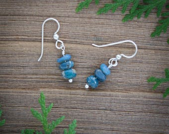 Michigan Jewelry, Leland Blue jewelry, Michigan earrings, Leland Blue earrings, Michigan stone earrings