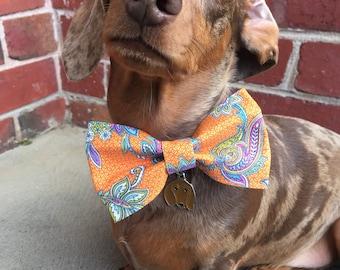 Orange Paisley Dog Bow Tie