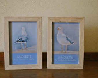 Maps of seagulls framed in small frames to ask.