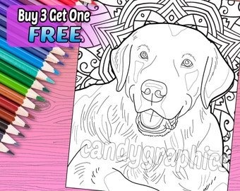 Labrador - Adult Coloring Book Page - Printable Instant Download