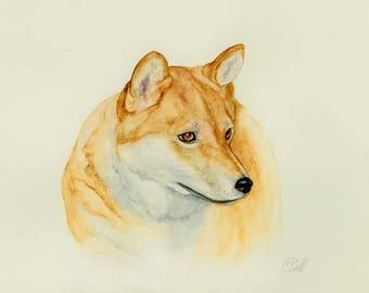 Pet Portrait On Sale, Shiba Inu Pet Portrait, Custom pet portrait, watercolor Shiba Inu painting, unique gift, handmade present