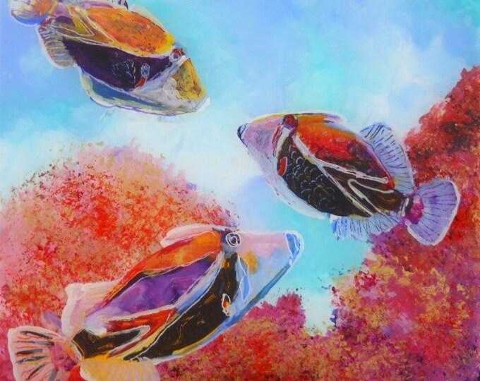 Humuhumu 5 Tropical Fish - 8x8 art print giclee - Hawaiian sea life - Ocean decor interior design - Reef Fish of Kauai Hawaii - Kids Art