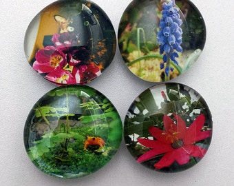 Handmade Glass Marble Magnets - original photographs of Nature