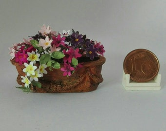 surfinia arrangement